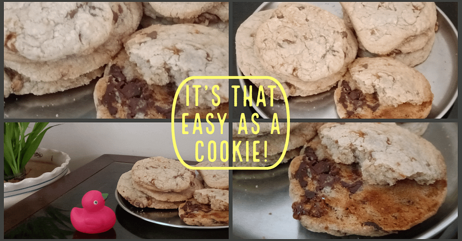 Delicate Chocolate Cookies Easy Recipe